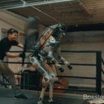 Заслуживают ли роботы сочувствия со стороны людей?