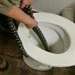 В туалете пермской квартиры найден двухметровый питон