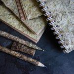 Проект созданного в России экологичного пластика из крапивы перехватили голландцы