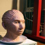 Ученые показали, как выглядела 40000-летняя родственница современных людей