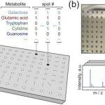 Создан первый опытный образец «молекулярного жесткого диска», способного хранить большие объемы информации
