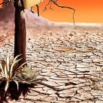 Ученые предрекли скорое исчезновение половины биологических видов по вине людей