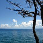 Байкал убивает спирогира: экологи предупреждают о катастрофе
