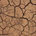 Ученые: впервые задве тысячи лет глобальное потепление охватило 98% Земли