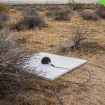 """Машины-монстры: Микрофон, длиной 50 километров, который будет """"слушать"""" полет сверхзвукового самолета X-59 X-plane"""