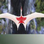 «Холодный дракон северных ветров» оказался одним изкрупнейших летающих животных вистории