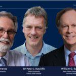 Вручена Нобелевская премия помедицине: зачто наградили ученых