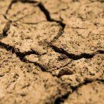 Ученые назвали смертельные последствия отглобального потепления