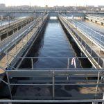 Российские ученые запустят в канализацию водоросли, чтобы очистить воду