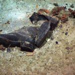 Внутри «Титаника» досих пор могут лежать тела людей